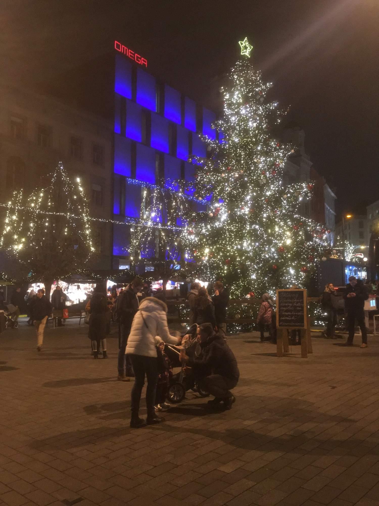 Strom na náměstí Svobody. Foto: Ondřej Fajstavr