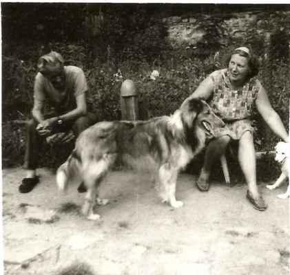 Na Tarance ale nebyli jen lovečtí psi. Dlouhosrstá kolie Dag. Vpravo půl špice.