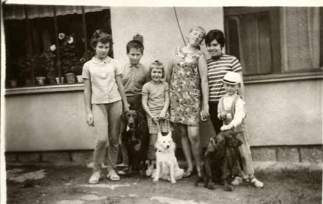 Dětská skupina se psy - krátkosrstý ohař César z Rik, špic Bonny a mladá Elis z Mračnice.