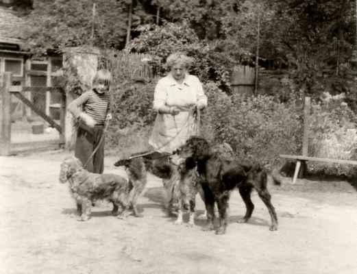 Sestřička pomáhala se psy od malička. Kokršpaněl Atom z Baldovce, gordonsetr Aris Green River, anglický setr Asta ze Mšeckého rybářství a český fousek Běla ze Slivice.