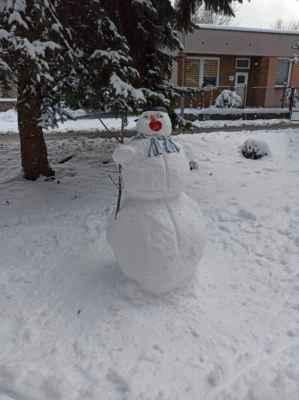 15.1.2021 Sněhulák v TU - tento trůní na sídlišti Smeťák