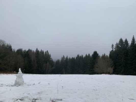 7.2.2021 na Šumavě - místo neupřesněno - poslal Václav Sklenář