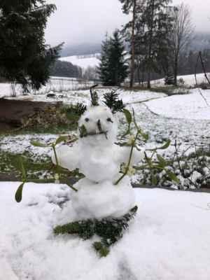 11.12.2020 vánoční atmosféru... - ... připomíná tento klučina v Blanském lese pod Kletí - od Slávy přes Jendu