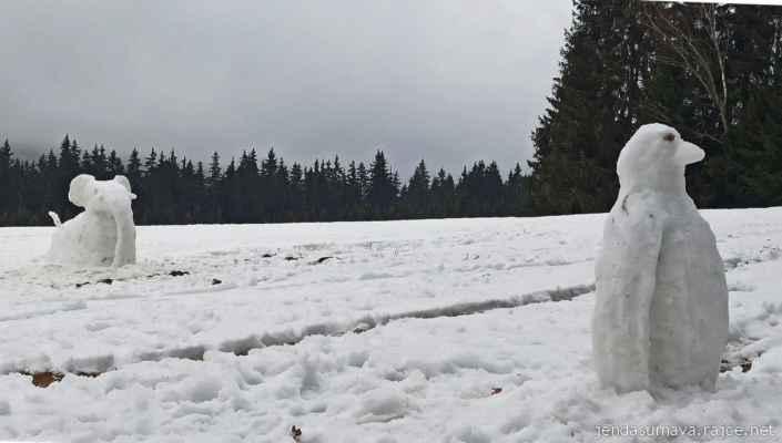 7.2.2021 mini ZOO u Řasnice - slůně a tučňák na procházce