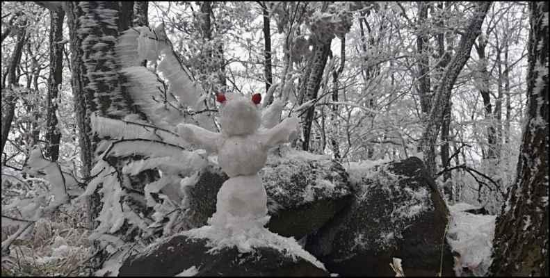 """28.11.2020 - """"NÁMRAZÁK"""" - Středohoří • Strážce Vidrholce nad Novou Vsí  od JirkyUL"""