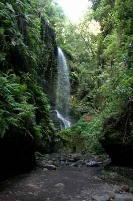 ...Cascada de Los Tilos...
