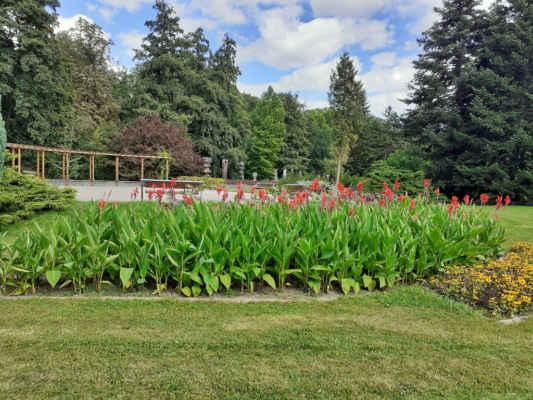 Areál botanické zahrady zabírá plochu asi 7,5 ha v Bezručových sadech na levém břehu Mlýnského potoka. Součástí je i alpinium umístěné na terase pevnostního valu. Dále také unikátní rozárium s několika stovkami různých druhů růží. Zajímavá je pak i smyslová zahrada pro nevidomé nebo slabozraké návštěvníky. Vše si můžete prohlédnout od jara do podzimu.