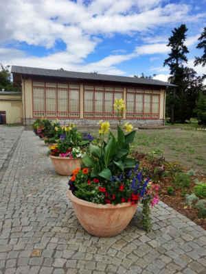 Budova oranžerie pochází původně z parku zámku ve Velké Bystřici a do dnešních Smetanových sadů byla převezena v roce 1886. Zde plnila svou původní funkci uchovávání sbírky exotických rostlin až do roku 1927. Jako ukázka historizující zahradní architektury je kulturní památkou. Po náročné rekonstrukci, která byla dokončena v roce 2018, bude sloužit zejména jako společenský a výstavní prostor.